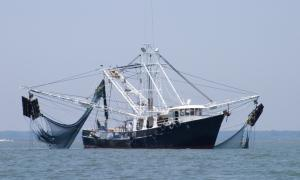 Fishing vessel BT VMS